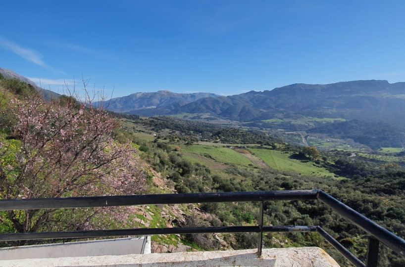 Cortes property for sale ref MB7989