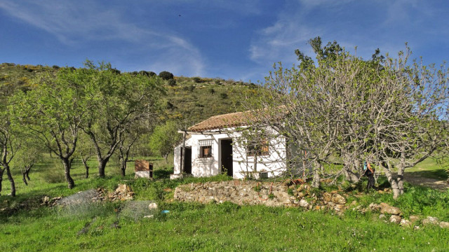 gaucin-country-property-for-sale-MB1974-