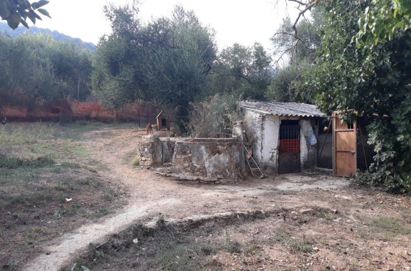 property for sale cortes de la frontera CU1