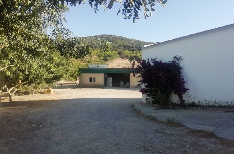 Jerez cortijo for sale