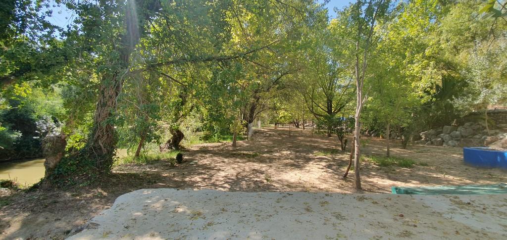 camping area camp site serrania de ronda