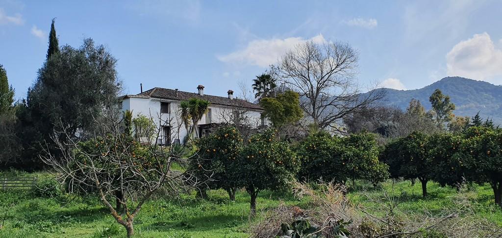 Hotel for sale Gaucin Ronda andalucia MGL1