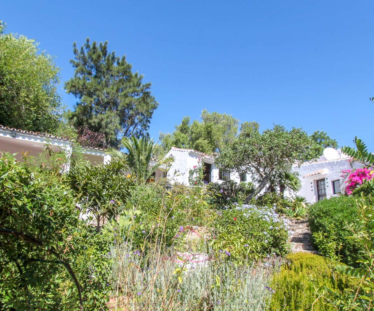 casares country property for sale